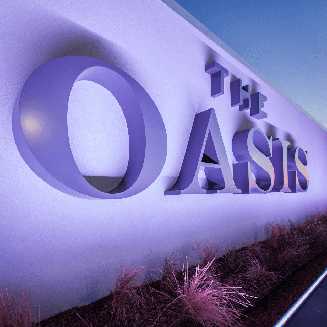 Oasis_5